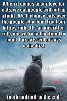 Felt that way about my dogs too, then a stray cat said..you need me and I need you.  Took time.