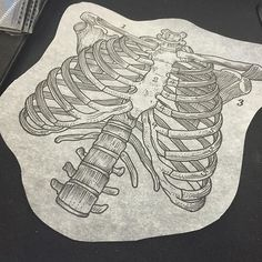 Would love to do this rib cage illustration here at @shaneoneillproductions Steel City Tattoo Convention, here all weekend and I have openings! Discounts on illustration designs. Come get em! #illustration #illustrationtattoo #btattoing #blackinonly #blackworkers #blackworkerssubmission #pittsburgh #pittsburghtattoo #pghtattoo