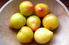 Lemon Plums- Very tart juicy with a hint of sweet of sweetness. Where can I find these?!