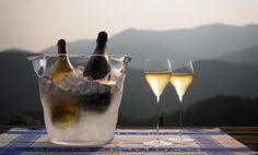 COCO FARM & WINERY | こころみ学園のワイン醸造場 ココ・ファーム・ワイナリー公式サイト