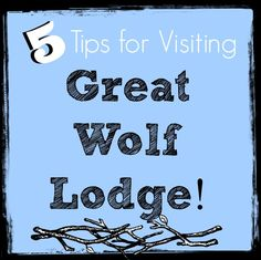 5 Tips for Visiting Great Wolf Lodge (and having an awesome time)! - Suburble