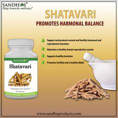 #SandhuProducts #Shatavari Promotes #Harmonal Balance #Ayurveda #Livermore www.sandhuproducts.com