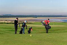 Chồng tự cho mình thuộc đẳng cấp cao quý khi chơi golf - http://pagetamsu.com/chong-tu-cho-minh-thuoc-dang-cap-cao-quy-khi-choi-golf/