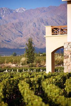 Bodega François Lurton, Tunuyan, Mendoza. Travel Around The World, Around The Worlds, Best Places To Travel, South America, Vineyard, Exterior, Wine, Mountains, Landscape