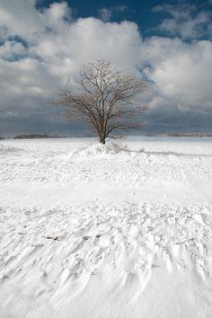 Winter, Muskegon County, Michigan