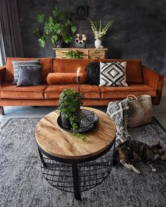 An attractive (yet rare) color combination, well-chosen decor pieces, and a custom bed for the cat - What's not to love about living space? What do you guys think? Home Living Room, Interior Design Living Room, Sofa Furniture, Outdoor Furniture Sets, Burnt Orange Living Room, Living Room Decor Inspiration, Home Decor, Luxury Bedding, Window Seats