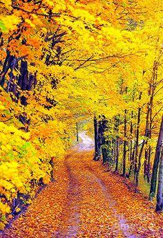 #beautiful of autumn