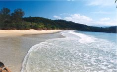 Parques Estaduais Ilha Anchieta e Ilhabela recebem título de Posto Avançado da Reserva da Biosfera, com ações efetivas de sustentabilidade