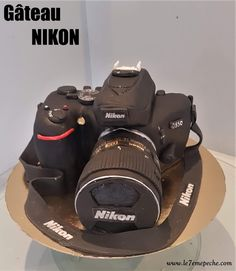Gateau appareil photo NIKON   Mollycake nature imbibé ruhm curd citron