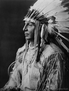 Head and Shoulders portrait of White Shield, half-length portrait, facing left.åÊPhotographed by Edward Curtis in 1908.