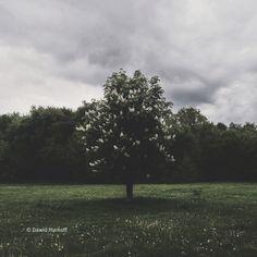 Pole Mokotowskie by Dawid Markoff