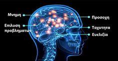 Είναι Αυτό Το Πιο Έξυπνο Φάρμακο Για Ενίσχυση Του Μυαλού Στον Κόσμο; | Secret Brain