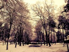 Foto by: Aleksandra Stankovic