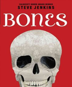 """""""Bones"""" by Steve Jenkins-Great to use for discussion of developing expository texts as well as discussion of main idea and supporting details."""
