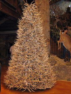 a deer antler tree by ashleyv, via Flickr