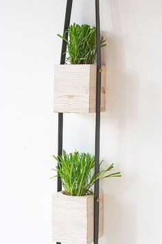 3 Tier Wood and Leather Hanging Wall Planter by FactoryTwentyOne