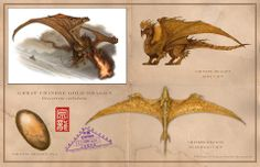 Book Dragon-The Great Chinese Gold Dragon