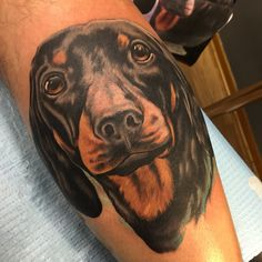 A little dog I did the other day.