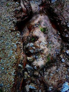 Monster im Wald von Ulrike Frimpong