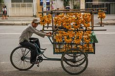 Banana Bicycle   by TerrenceSly