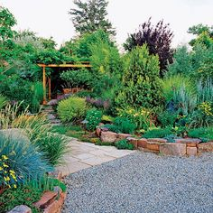 Drought Tolerant Backyard Designs drought tolerant landscape parkway 2 resize Drought Tolerant Landscape Garden Drought Free Green Scape Follow And Rate Our Work