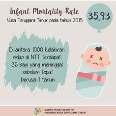IMR atau AKB (Angka Kematian Bayi) . . . #bps #badanpusatstatistik #ntt #nusatenggaratimur #infografis #infographic #design #desain #wedding #marriage #statistic #statistik #pastel #pastelcolors #color #adobe #adobeillustrator #mortality #social