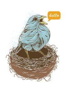 #bird  #blue  #orange  #inspiration  #creative  #Illustration