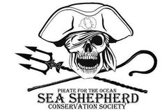 Good morning Sea Shepherds and supporters, remember contribute their bit if you are on the beaches or rivers, please pick up trash. Do not throw it out of habit as have many sources of rivers, lakes and streams, which flow to the beautiful ocean. Contribute your bit. BY THE OCEAN! @sea Shepherd Conservation Society #defendconserveprotect