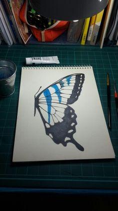 butterfly  sketch Butterfly Sketch