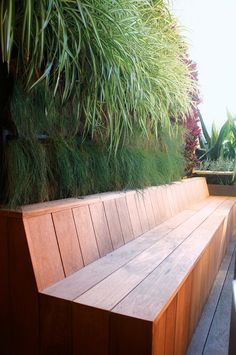 Red bromeliads and grasses have been planted in this vertical garden for their dramatic colour and hardiness – as epiphytes, they can handle the limited morning sunlight and salty winds. seating 12 vertical garden ideas to inspire your own green wall Backyard Seating, Garden Seating, Backyard Patio, Backyard Landscaping, Garden Bench Seat, Deck Bench Seating, Backyard Waterfalls, Backyard Ponds, Benches