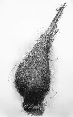 Bird Nest No.6, Charcoal on paper, 150 x 107 cm. Charcoal drawing by Liu Ling from Art Is http://artis.sg - #realism #nature