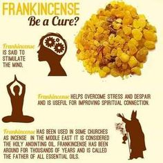 The Power of Frankincense Essential Oils - Taruna Oils Frankincense Essential Oil Uses, Frankincense Benefits, Frankincense Oil, Doterra Essential Oils, Essential Oils For Migraines, Essential Oils For Sleep, Essential Oil Blends, Oil For Headache, The Cure