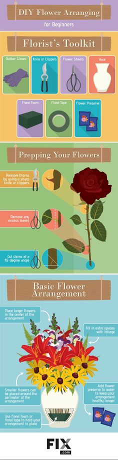 Gorgeous Flower Arrangement Tips and Ideas for Beginners [Infographic]