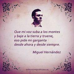 (Miguel Hernandez )