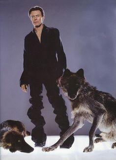David Bowie Wonderworld Message Board: BOWIE 2002 by Markus Klinko and Indriani