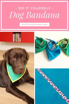 DIY sew project: 'How to make the perfect dog bandana': in a few easy steps you can make your own bandana! This bandana is made with bias tape, which can be a little bit tricky, but I'll guide you through the process. Click through to read the full bandana tutorial or repin and save for later!