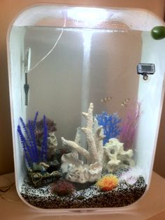 Biorb life reef conversion story a lot of work for for Decoration aquarium 60 litres