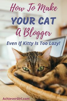 Have you thought about making your cat a blogger? Is very easy to set up a cat blog and an ideal way to earn money by making your cat popular. This step by step guide will get your cat blogging business started, give you tips on content, how to make money blogging, making your cat popular and getting traffic to your cat's blog. #achievergirl #catblog #catblogideas #catblogger #catblogging #startablog #makemoneyblogging Ways To Earn Money, Make Money Blogging, Make Money From Home, Way To Make Money, Make Money Online, Saving Money, Animal Reiki, Mental Health Benefits, Improve Yourself
