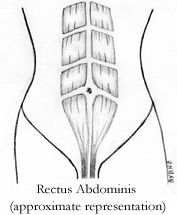 Diastasis Recti or Abdominal Separation is a common prenatal and postpartum problem. Find out how to test for, prevent, and rehab safely and easily. Diástase Abdominal, Abdominal Exercises, Stomach Exercises, Ab Exercises, Baby Workout, Pregnancy Workout, After Pregnancy, Post Pregnancy, Pregnancy Video