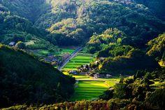 Les 10 régions qui attirent les Japonais et qui vous donneront envie de vivre à la campagne | DozoDomo