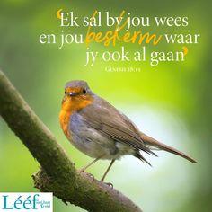Genesis 28 15, Afrikaans Quotes, Lent, True Words, Beautiful Birds, Bible Verses, Me Quotes, Relationship, Christian