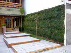 Modelos de jardines peque os dise o de interiores - Jardines interiores pequenos ...