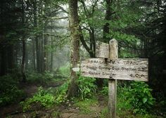Appalachian Trail at Clingmans Dome / via Petes Dilemma
