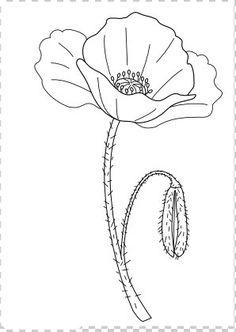 Simple Flower Drawing, Flower Drawing Tutorials, Simple Line Drawings, Floral Drawing, Easy Drawings, Flower Art, Fabric Painting, Painting & Drawing, Watercolor Paintings