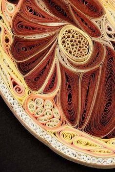 quilling-designs-human-body-anatomy (5)