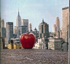 #New #York beautiful