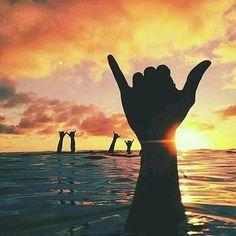 "Make a good day ahead guys  with this BJJ hand gesture - ""Shaka"". . ���� #bjj #brazilianjiujitsu #jiujitsumotivation #bjjart #jiujitsumanila #mma #ufc  #onefc #urcc #combatives #canalcombate #fabricio #atos #ribeiro #gracie #osirishunterbjj  #tatami #entrapfightgear  #hayabusa #venumfightgear http://misstagram.com/ipost/1538069752794366013/?code=BVYUkqHFMA9"