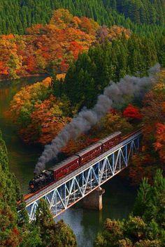 Colored leaves and steam train, JR Tadami-Line, Fukushima, Japan Fukushima, Train Tracks, Train Rides, Train Trip, Train Journey, Beautiful World, Beautiful Places, Beautiful Scenery, Old Trains