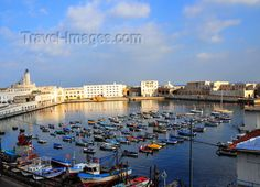 algeria504: Algiers / Alger - Algeria / Algérie: Admiralty basin and Fishing harbour| Darse de l'Amirauté et Port de Pêche - photo by M.Torres - (c) Travel-Images.com - Stock Photography agency - Image Bank