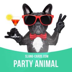 """""""Party animal"""" means a person who loves to go to parties. Example: Emma went to three parties tonight. She's such a party animal!"""